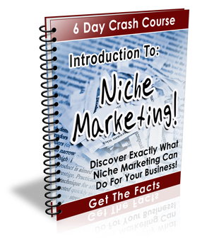 Thumbnail Introduction to Niche Marketing - 6 Day Crash Course